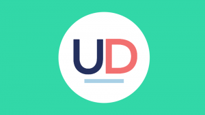 Universal Design for Learning Icon