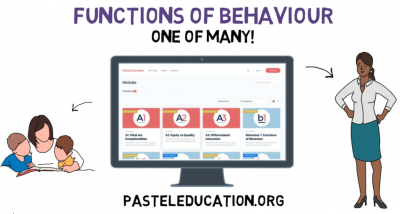 Functions of Behaviour explainer video icon